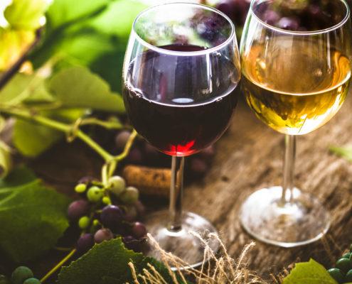 recette du vin d'absinthe