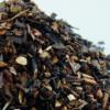 rooibos-Honeybush
