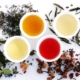abonnement-thes-infusions-bio