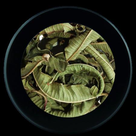 verveine_infusette-compostable